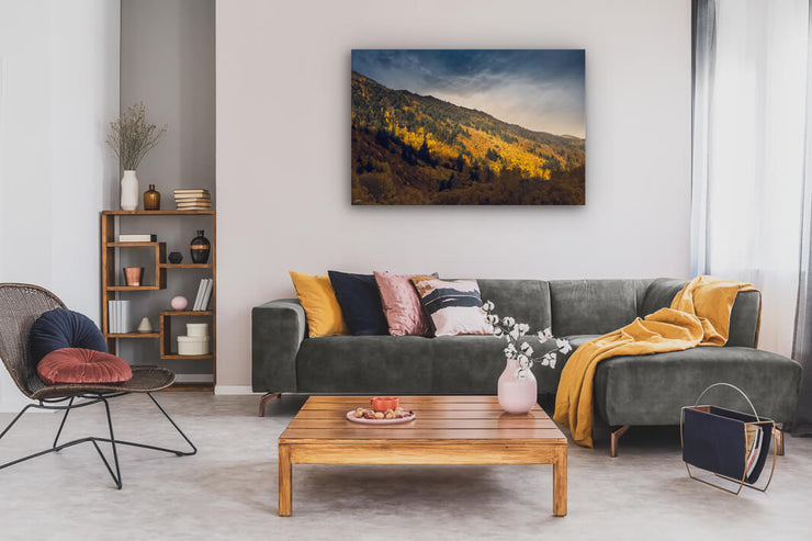 Lounge wall art on canvas of golden autumn trees in Arrowtown