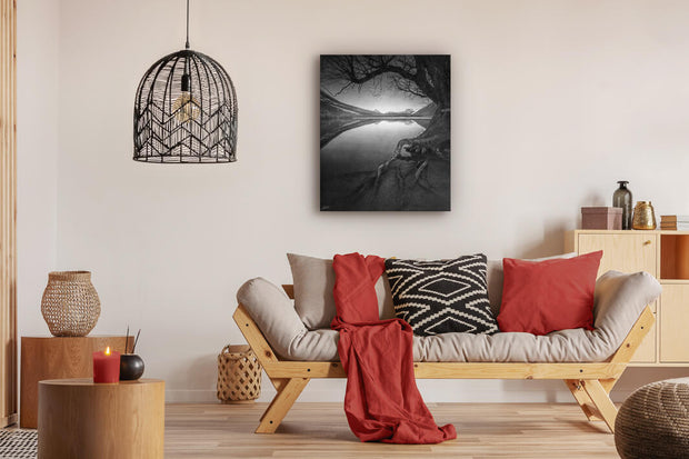 Artistic black and white photo of tree and lake in New Zealand on lounge wall