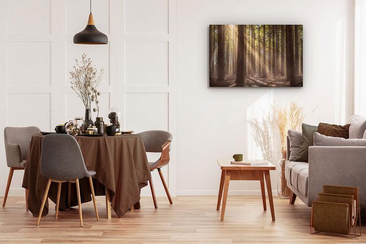 Photographic wall art of sunlit forest trees on a dining room wall