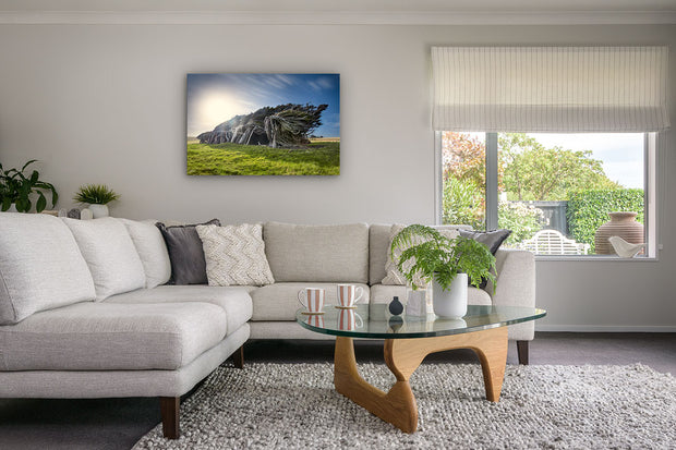 Photo canvas wall art of windswept trees of Slope Point, New Zealand, on modern lounge wall