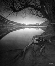 Artistic black and white photograph of Lake Pearson - New Zealand Landscape