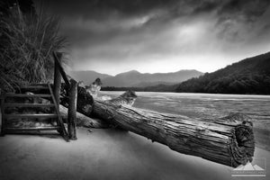 Black and white Landscape photo of storm clouds and fallen tree in the Abel Tasman.