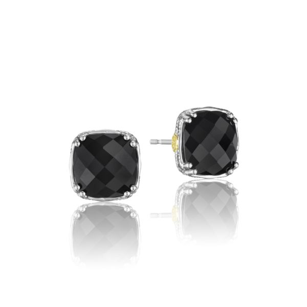 Black Onyx Faceted Stud Earrings