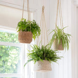 Jute Hanging Plant Pot - Tapered