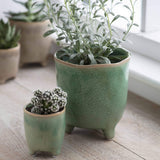 Positano Pots in Foliage Green