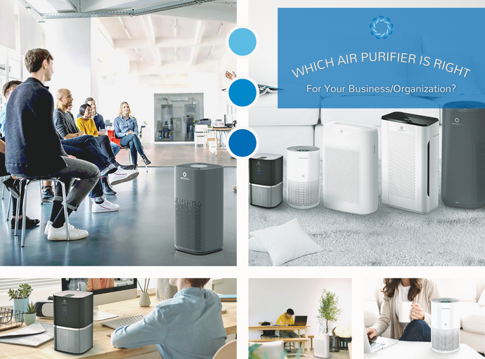 Which Air Purifier is Right For Your Business/Organization?