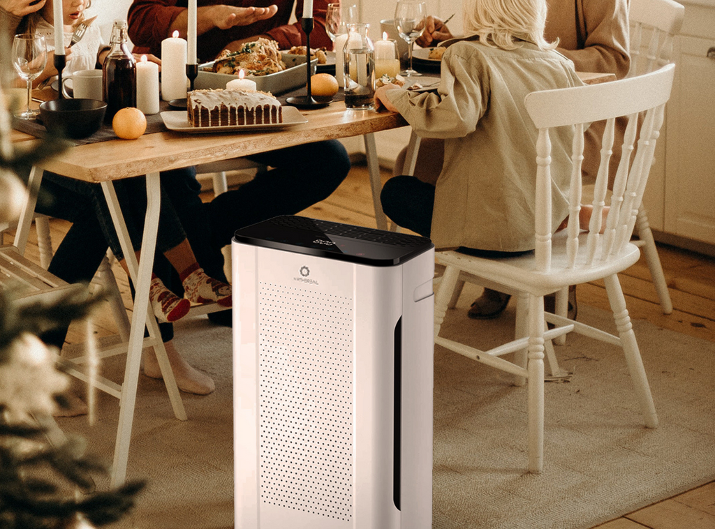 air purifier for dining room