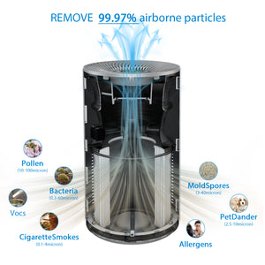 Airthereal Day Dawning ADH80 7-in-1 True HEPA Air Purifier 04