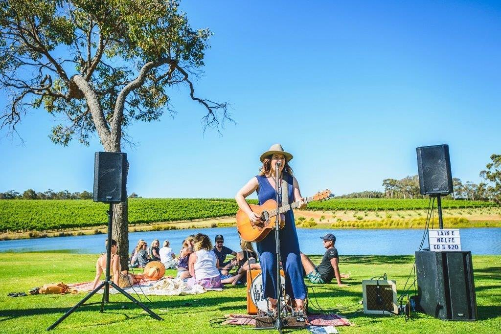 Live Music on the Lawn | February Lineup