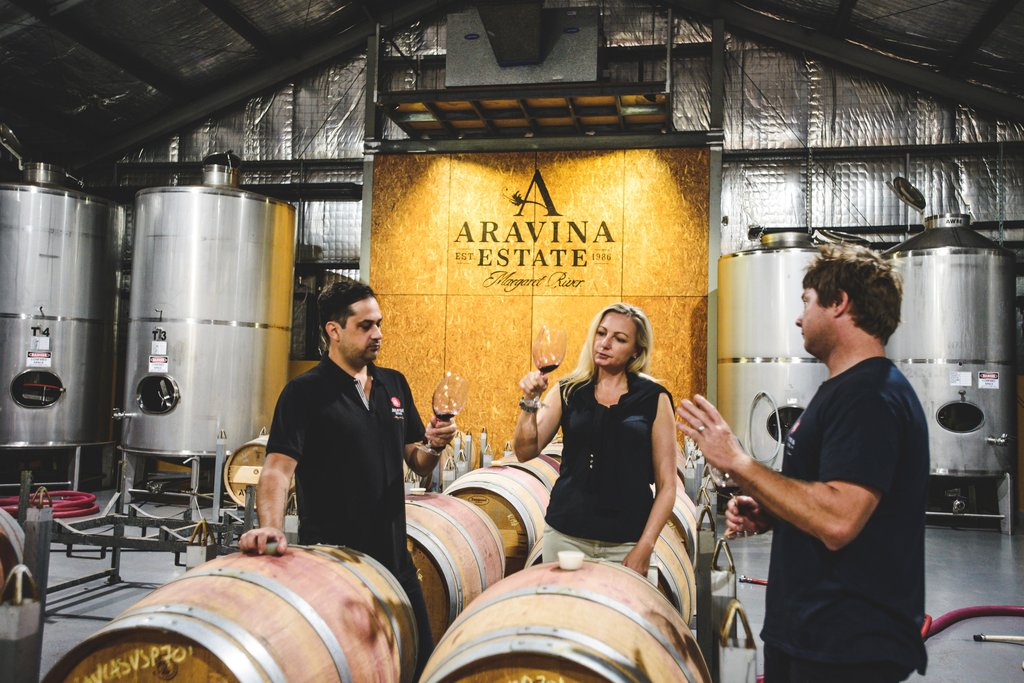 Wine & Vine Update - April 2019 | Aravina Estate