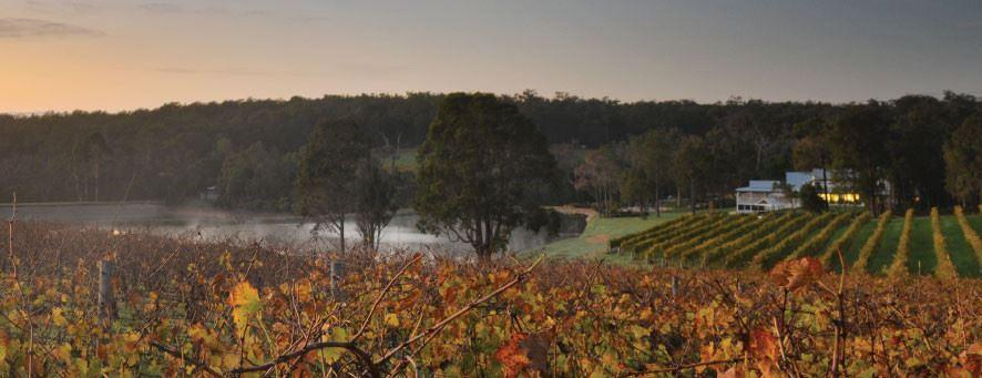 Private Properties and Aravina Estate Winter Special - Aravina wineries