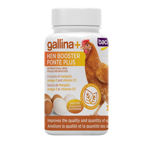 gallina+ Hen booster | Recreational hens - 100g