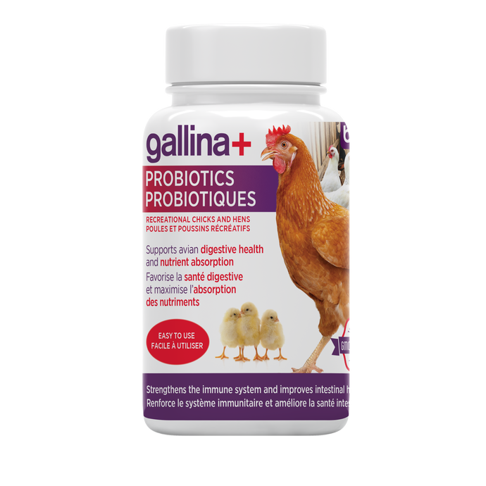 gallina+ Probiotics | Residential chicks and hens - 100g