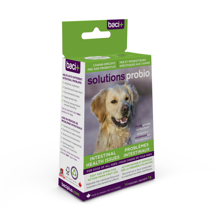 solutions probio | Probiotics and prebiotics for dogs of all ages