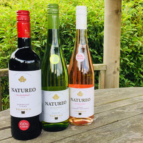 Low Carb Non-Alcoholic Wine - Torres Natureo Syrah Muscat Rose