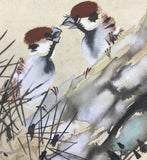 Sparrows on pine tree (24 x 27 cm)