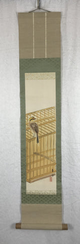 Bird on cage - very short!!