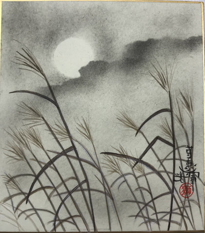 Moon with clouds and grasses