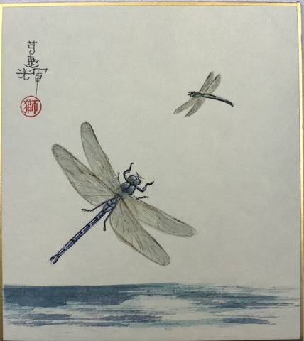 Dragon-flies