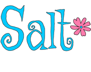 Saltgirl Clothing