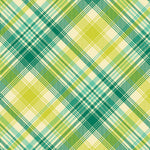 Tartan in Aquamarine by Joel Dewberry