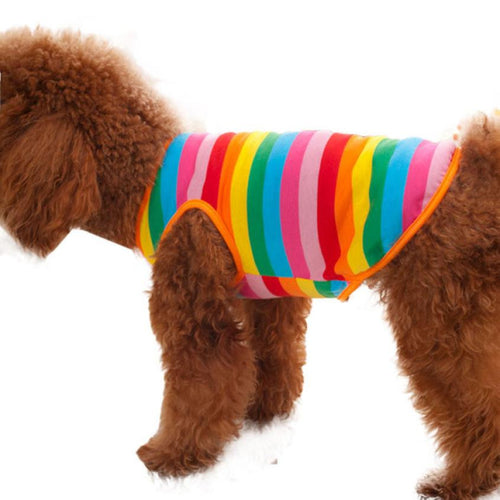 Multi-Coloured Summer Vest for Small Dogs