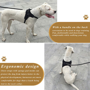 Durable Padded Dog Harness