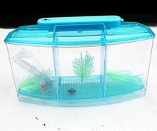 3-Way Splitting Incubation/Breeding Fish Tank