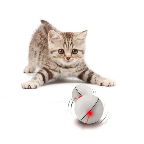 Automatic Self-Rotating Cat Ball with Light