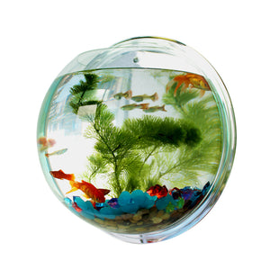 Acrylic Wall Hanging Fish Bowl