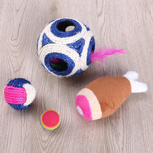 Cat Teaser Toy Set - 16 Pieces