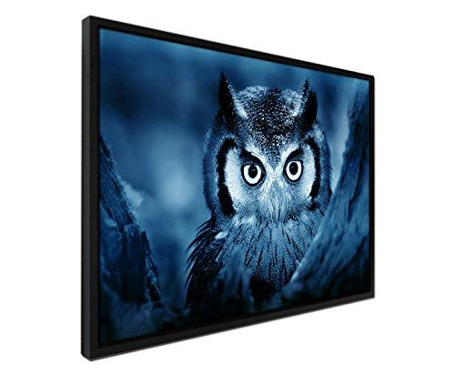 105x75 cm Canvas Wall Picture – Blue Petrol – Including Shadow Frame Black Owl with White Face