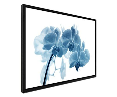 105x75 cm Wall Painting – Blue Petrol – Including Shadow Frame Black Flower Orchid Macro Canvas Wall Picture