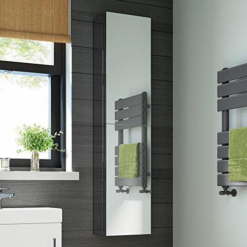 1300 x 300 Tall Stainless Steel Bathroom Mirror Cabinet Double Door Storage Unit MC123