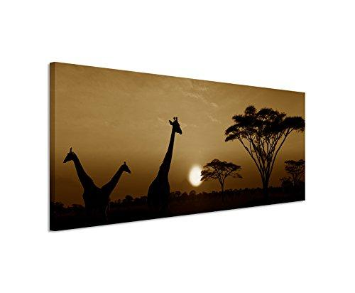 150 x 50 cm Wall Canvas in Sepia Sunset Panoramic Photo Wallpaper Safari Giraffe Serengeti National Park