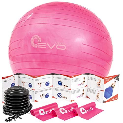 Exercise Ball For Therapy, Fitness, Pilates and Yoga | Evo28 75 cm Diameter Fitness Gym Ball, Office Ball For Balance Therapy And Workouts With Air Pump And Three Resistance Bands