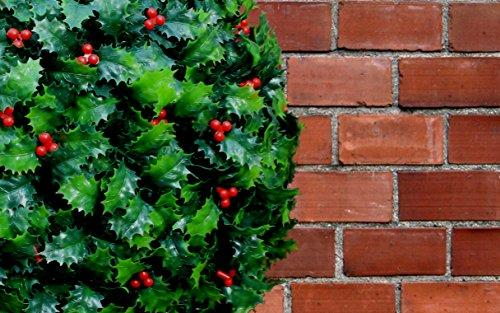 Christmas Topiary Balls.Best Artificial Tm Christmas 28cm Holly Topiary Balls 30 Bright White Battery Led Lights