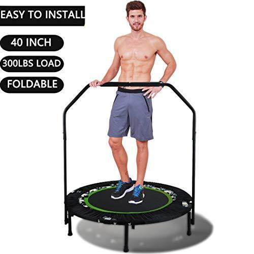 Bunao Portable & Foldable Fitness Workout Mini Rebounder Trampoline 40 Inch Max Load 300lbs with Adjustable Handrail for Indoor Garden Workout Cardio Exercise (Green)