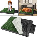 Bunao Portable Indoor Pet Toilet Dog Litter Grass Mat Restroom Potty Training Playing with Tray and Loo Pad 24.6 x 19.5 x 2.7inch (Grass)