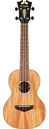 D'ANGELICO 4 String Acoustic Guitar (DAUCONMAHNS)