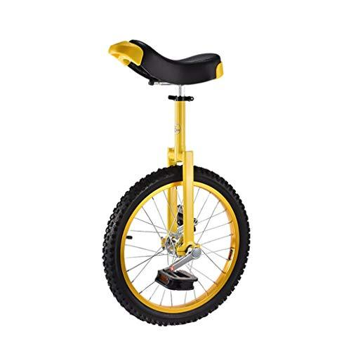 DC les Unicycles Wheelbarrow, 20 inch children's adult sports unicycle, acrobatics, single fitness balance bike (4 color options) (color : B)