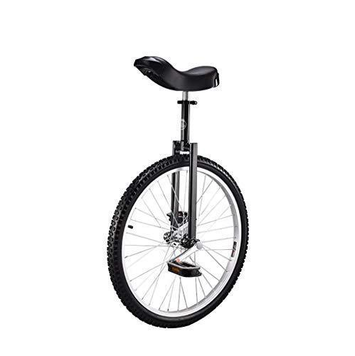 DC les Unicycles Wheelbarrow, 24 inch children's adult sports unicycle, acrobatics, single fitness balance bike (2 color options) (color : B)