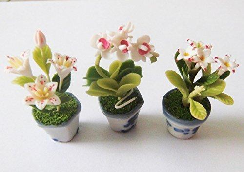 Dollhouse Flower Miniature in Pots Set Made of Artificial Clay Realistic it Very Cute. (3 Pots) by N/A