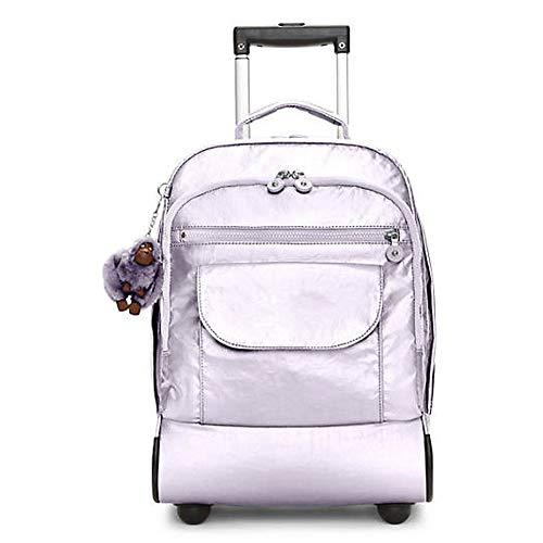 DWhui Travel Wheeled Rolling trolley backpack Suitcase Hand Luggage Cabin Laptop PC Tablet Computer Bag Suitable for business, travel, office use