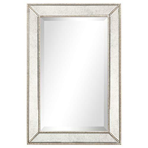 Empire Art Direct Modern Mirror, Clear,Champagne, 20 in. x 1.57 in. x 30 in