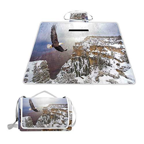 FOURFOOL Aerial View Of Bald Eagle Flying The Snow Covered Grand Canyon Rocky Arizona USA Waterproof Outdoor Travel Foldable Picnic Handy Mat Tote for Beach Camping Hiking 145 x 150 cm