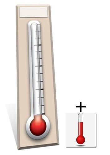 Fundraising Thermometer - General Party Lifesize Cardboard Cutout / Standee / Standup - Includes 8x10 (20x25cm) Star Photo