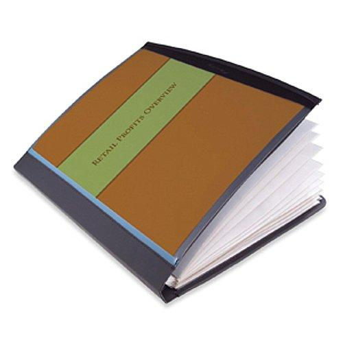 GBC Smart View Presentation Book, Includes 12 Sheet Protectors, 11.5 x 10.3 Inches, Black (W21514B)