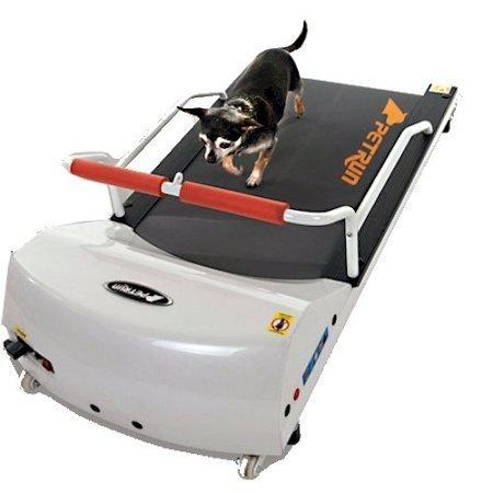 Go Pet Petrun Pr700 Dog Treadmill Indoor Exercise / Fitness Kit - For Dogs Upto 44 Pounds by GoPet