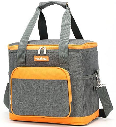 Goldwheat Lunch Box Bag Insulated Lunch Tote Soft Cooler Bag for School Outdoor Beach Picnic,Grey